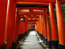 ◆観光◆伏見稲荷大社