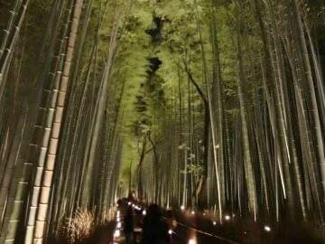 ◆観光◆嵐山・竹林の道