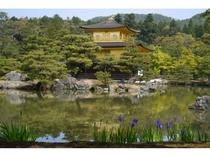 ◆観光◆金閣寺