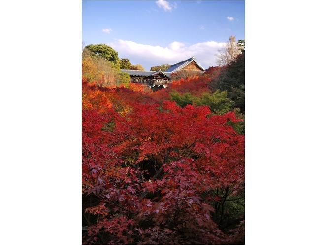 ◆観光◆東福寺 (通天橋)