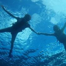 【青の洞窟探検ツアー】人気のシュノーケリング!トロピカルな魚たちの歓迎♪幻想的な≪青の世界≫へ♪