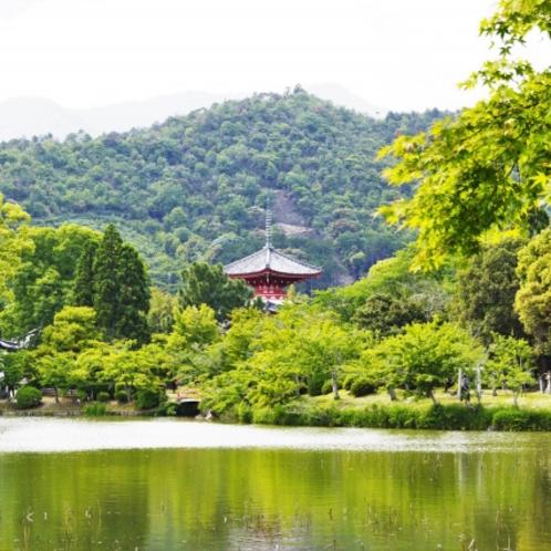 大覚寺・大沢池(当館よりバスで約15分)