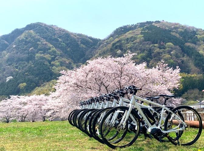 桜×eBike