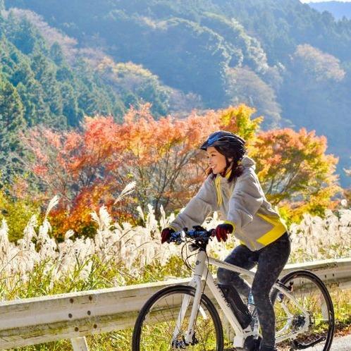 伊豆長岡には紅葉を楽しめるスポットも沢山ございます。城山からはパラグライダーもお楽しみ頂けます。