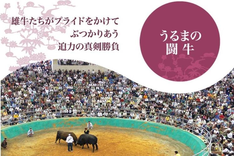 うるま市の闘牛