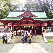 初詣スポットとしても人気「来宮神社」(当館より車で約8分)