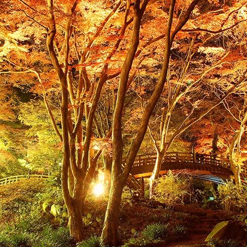 熱海梅園は秋になると紅葉鑑賞スポットに!(当館より車で約6分)
