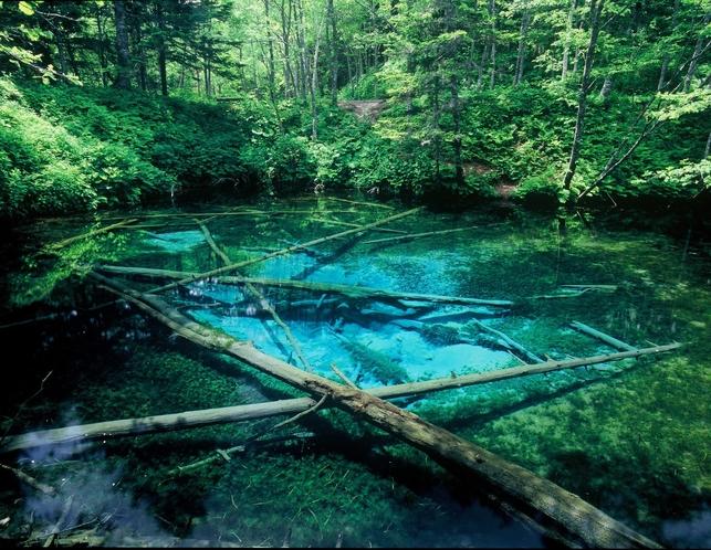 コテージ近傍の景勝地 神の子池