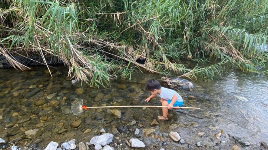 ・小さいお子さんが大興奮する川遊び