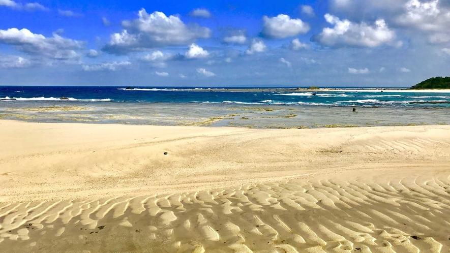 ・サイクリングロードから見えるビーチ、お天気や潮の干満に合わせ、海がさまざまな表情をみせてくれます。