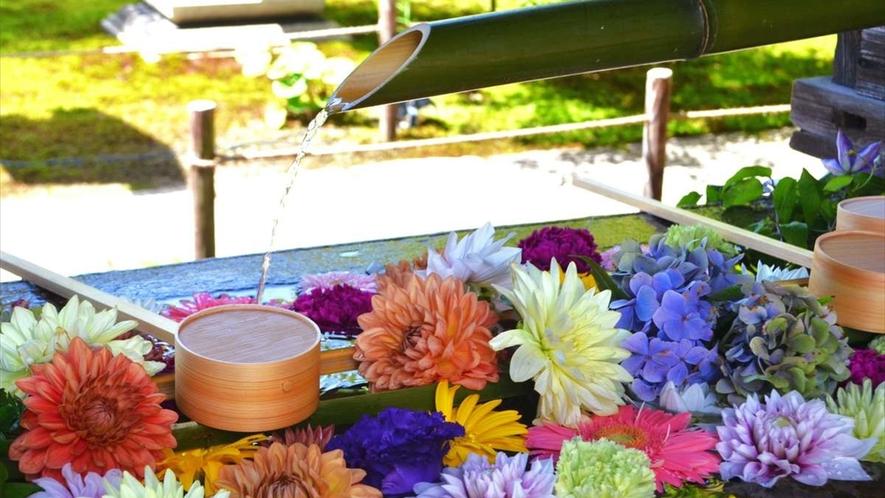 東福寺塔頭の勝林寺の花手水。座禅や写経の体験もできます。