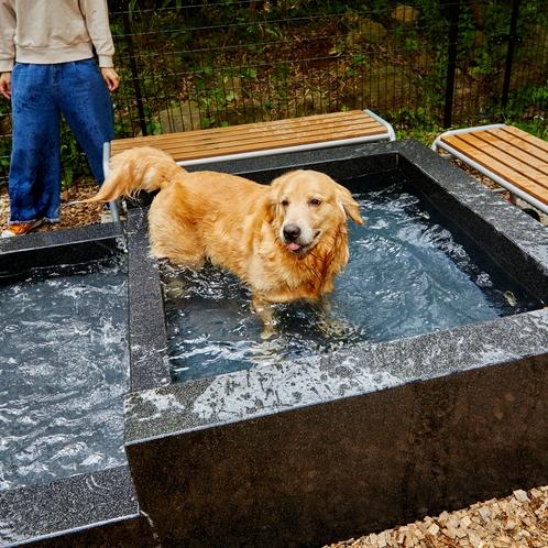 【ドッグラン】飼い主さんは足湯にもできるドッグスパ