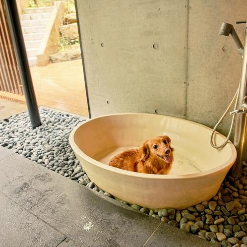 【足洗い場】各お部屋と、エントランスにございます