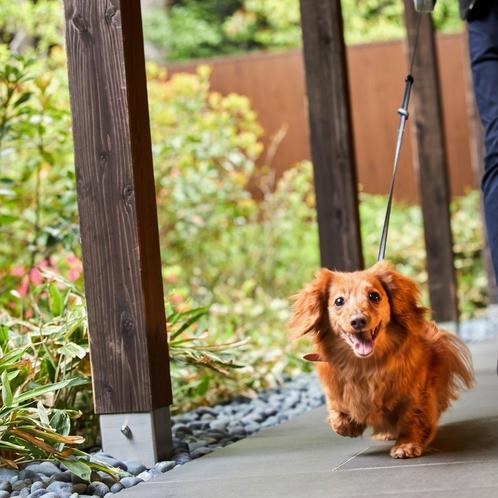 廊下もリード1本で愛犬と一緒に歩けます