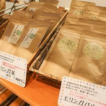 *【館内/お土産処】佐多岬の地で育った90種類もの栄養素を含む「モリンガ」のお茶とパウダー