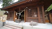 *【和気神社】必見!伝説の白い猪にちなみ境内では白猪の「和気(わけ)ちゃん」が飼育されています