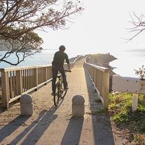 *【レンタサイクル】自転車でしか行けない場所にも足を運ぶことができます