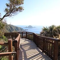 *【佐多岬遊歩道】亜熱帯を思わせるヤシや熱帯植物があり南国ムード満点