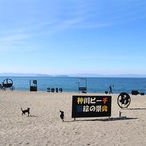 *【神川ビーチ影絵の祭典(期間限定開催)】当館から車で約50分!開催期間は「錦江町HP」にてチェック