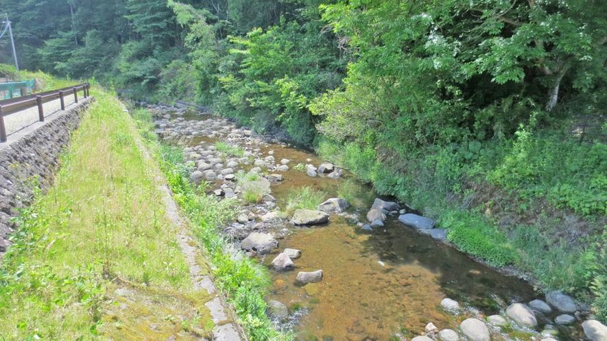 川沿い1kmの散歩道を川音を聞きながらお散歩♪