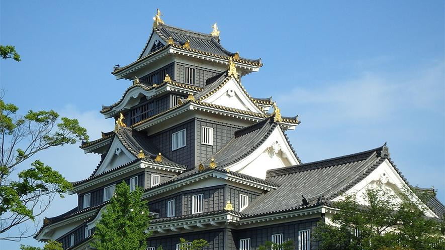 岡山城(詳細画像)