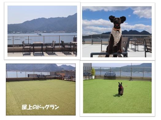 【可愛い愛犬と宮島旅行一緒にお泊りプラン】♪お食事は部屋食でワンちゃんと一緒