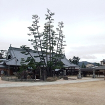 宮島 大願寺(写真提供:広島県)