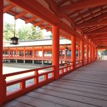 厳島神社 回廊(写真提供:広島県)