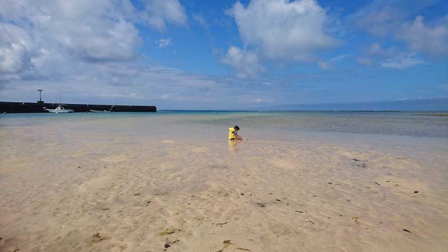 穏やかな須野海岸