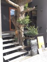 treeside Front 下階へ