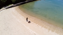 *目の前のビーチは開放感抜群!ワンちゃんも思いっきり走り回れます♪