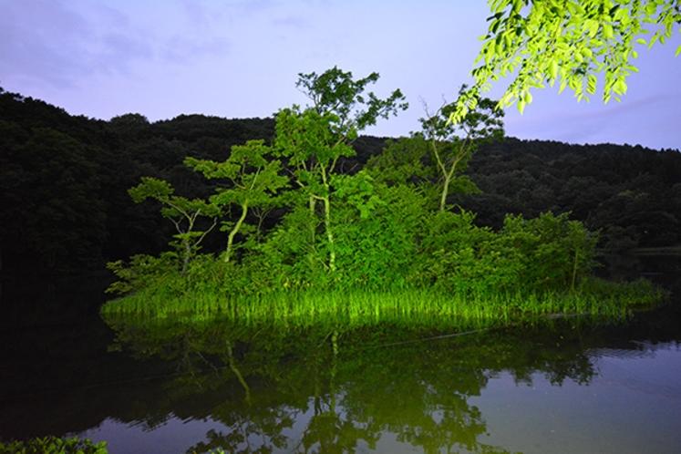 五色沼夜景