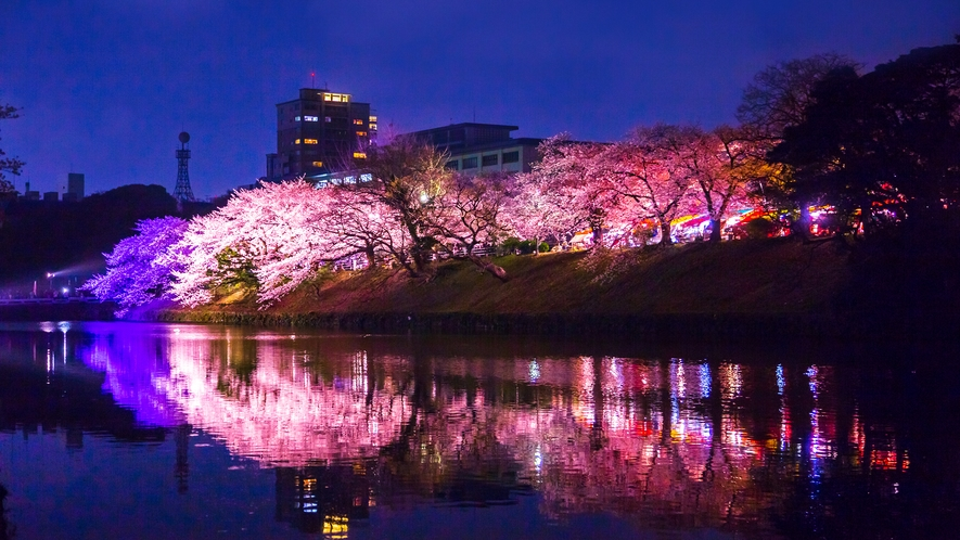 舞鶴公園の桜(ライトアップ) →車12分/バス19分 [写真提供:福岡県観光連盟]