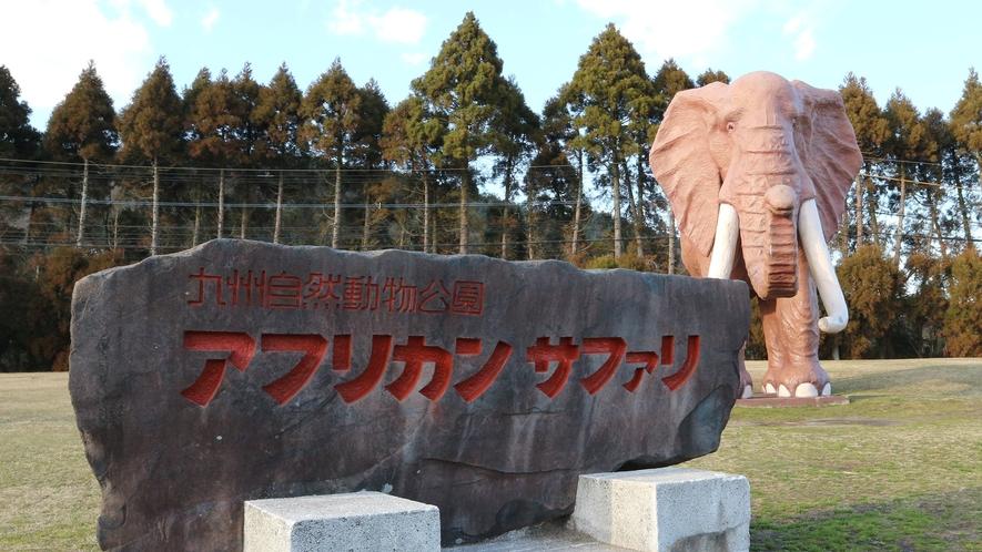 *周辺観光/九州唯一のアフリカンサファリパーク!当館から車で約15分です。
