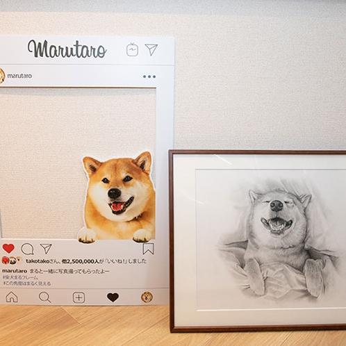柴犬まるのフォトフレームで写真を撮りましょう!