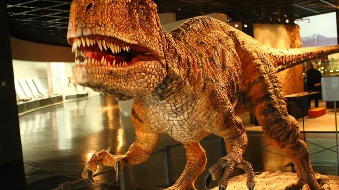 ふくい恐竜博物館【特別展】入場チケット付<7月16日〜10月31日>お食事なし・素泊まりプラン