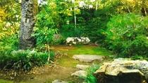 庭園(裏庭)