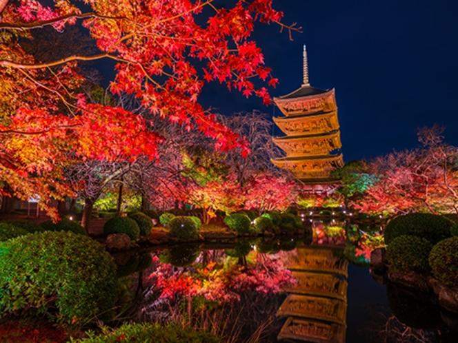 【紅葉スポット・東寺】京都の象徴である五重塔周辺が深紅に染まり池に移る姿が美しい〈烏丸線で約30分〉
