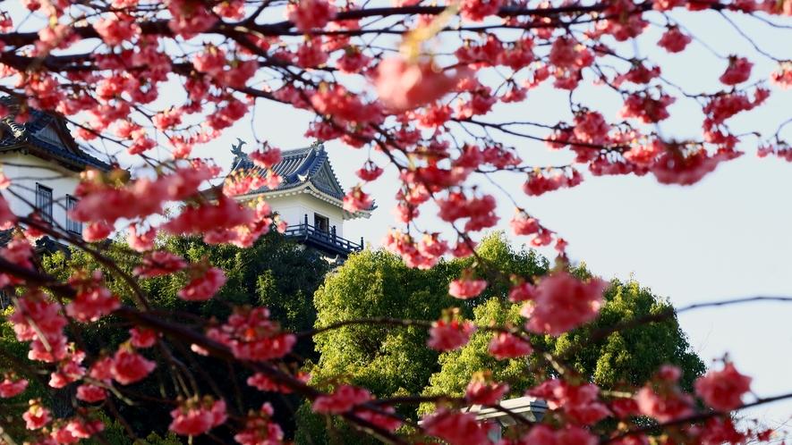 ◆春には桜越しの掛川城をご覧いただけます♪