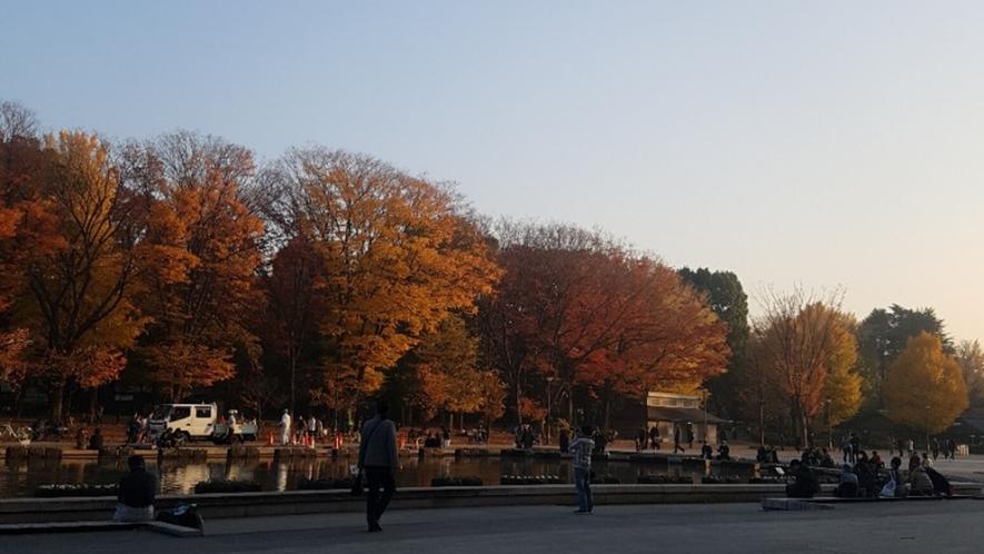【上野公園(秋)】