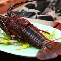 夕食◆海幸グルメの王道「伊勢海老」を味わう