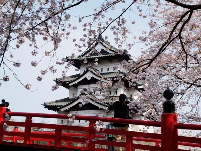 4弘前城さくら祭り