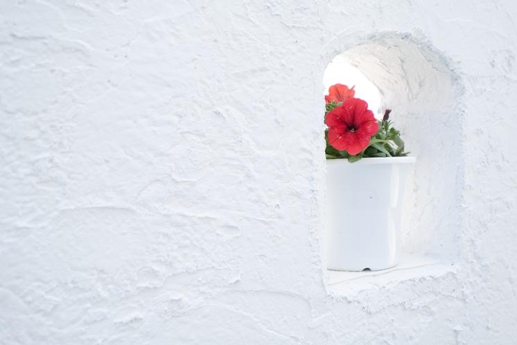 おしゃれなお花