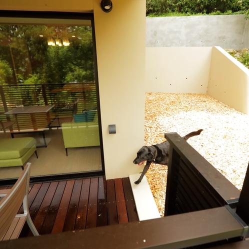 【デラックスルーム(定員4名)1階】大型犬も自由に行き来ができるドッグランへの入口