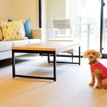 【スーペリアルーム(最大定員3名)】愛犬が過ごしやすい、滑りにくい床材を使用