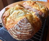 自家製酵母の手作りパン