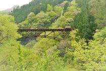 日原街道から見た鉄橋