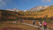 紅葉狩りを楽しむ秋の「栂池自然園」