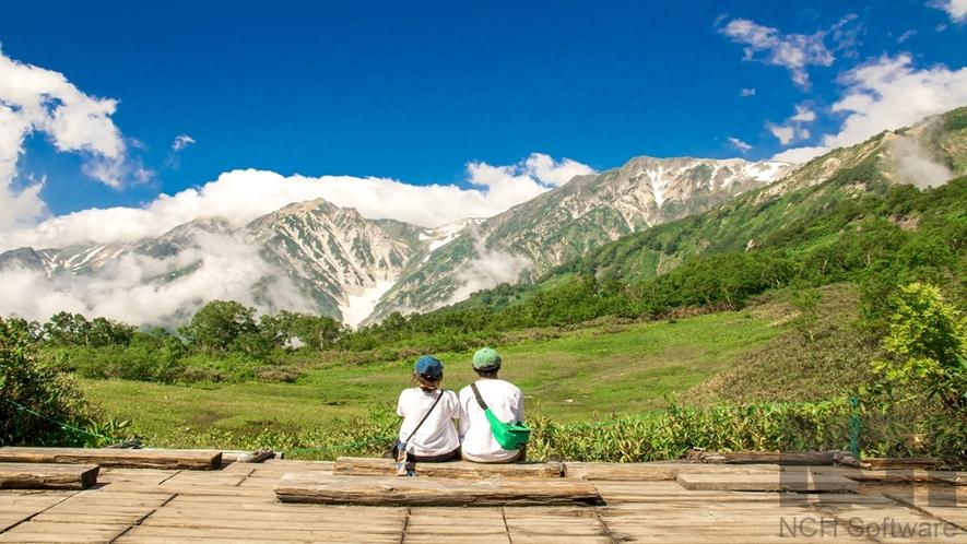 栂池自然園「展望湿原」より望む白馬三山