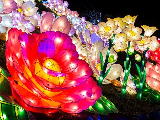 例・グランイルミ(ランタン赤い花)